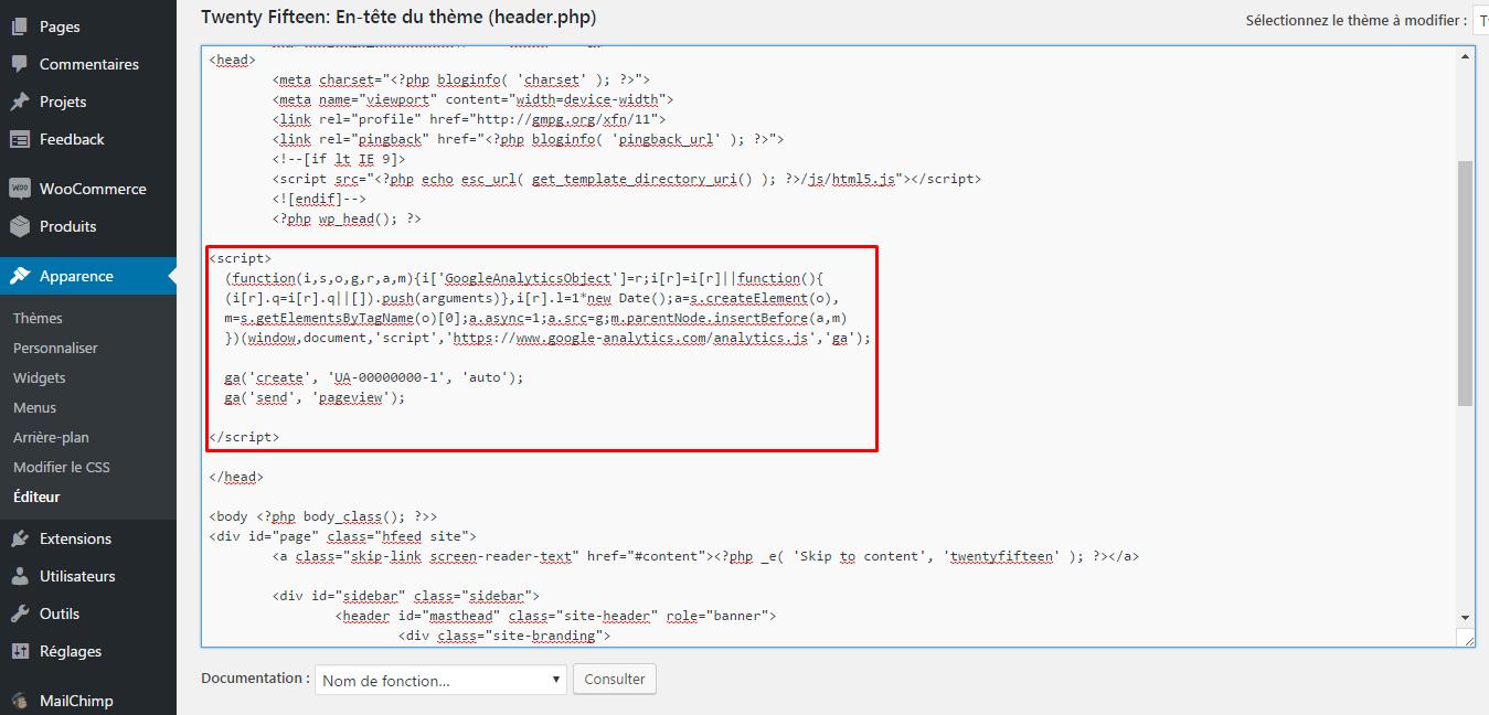 script analytics header