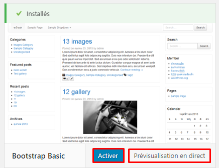 activer previsualisation theme wordpress