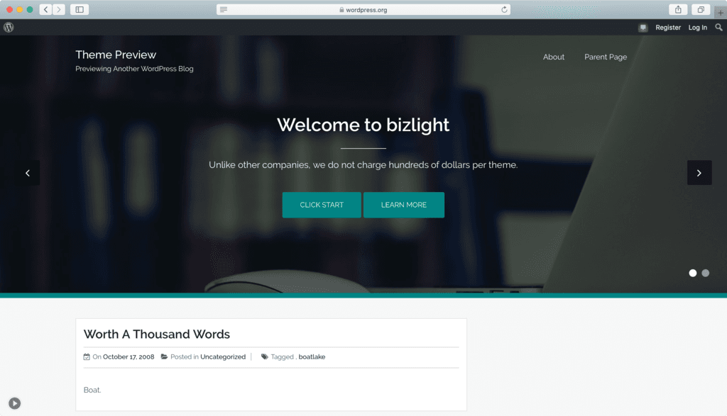 Thème WordPress Bizlight.