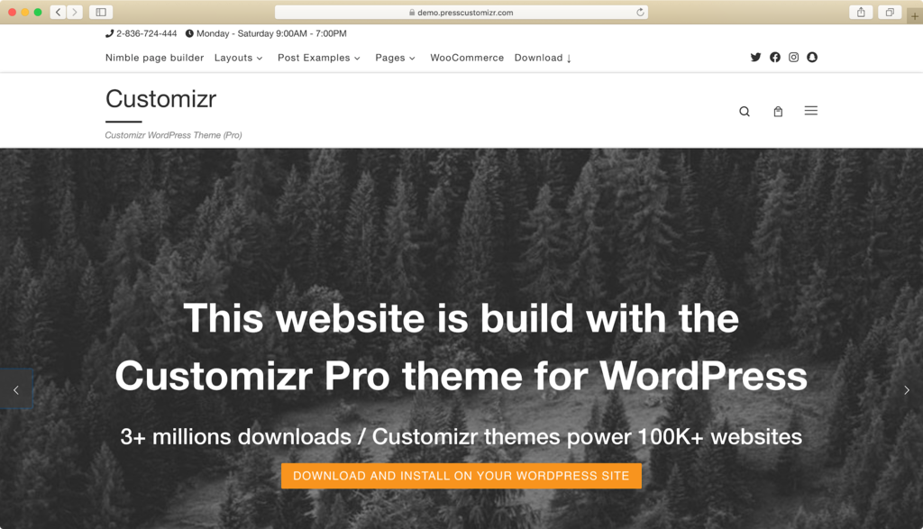 Thème WordPress customizr.