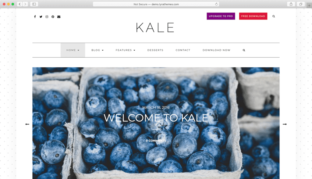 Thème WordPress Kale.