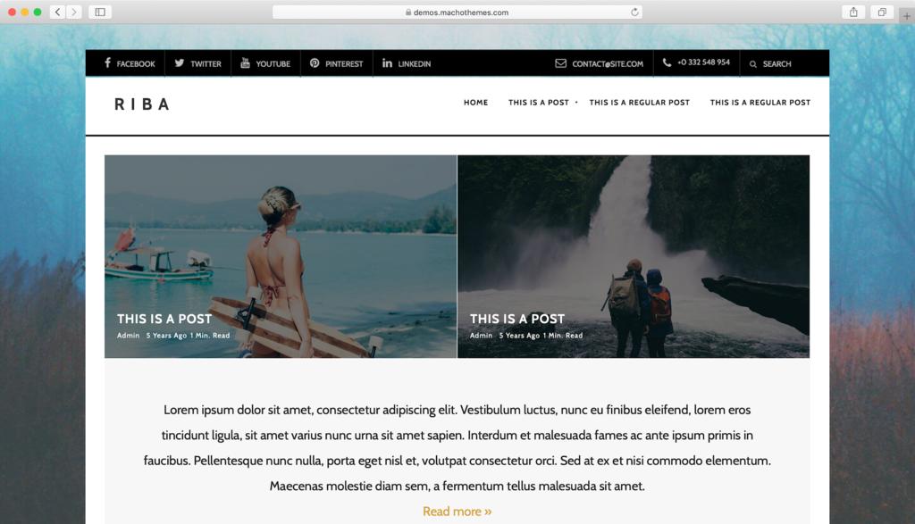 Thème WordPress Riba Lite.