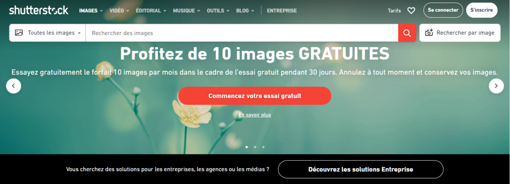 Le site web de Shutterstock.