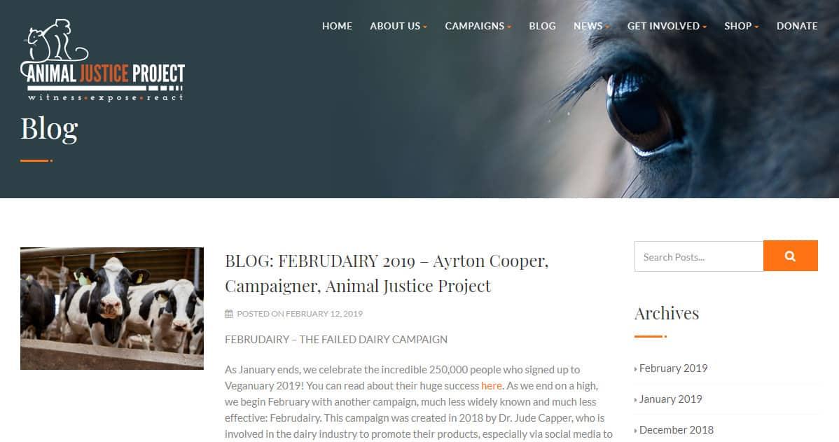 Exemple de blog sur les animaux