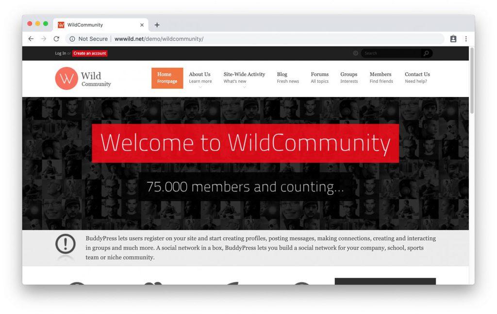 Thème WildCommunity pour intranet WordPress