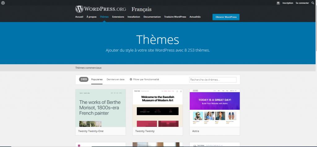 Capture d'écran de la section thèmes sur wordpress